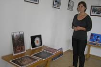 V galerii Doubravka vystavují jak místní umělci, malíři a fotografové, tak i  výtvarníci z Polné, Hlinska nebo Hrochova Týnce.