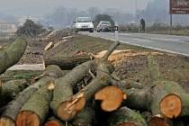 Alej padla. Kvůli opravě silnice mezi Ždírcem a Krucemburkem šly k zemi desítky stromů. Jenže, jak se ukazuje, na opravu silnice si řidiči ještě počkají.