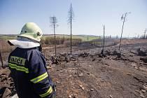 Dubnové požáry na Vysočině. Les po požáru u Kamenice na Jihlavsku.