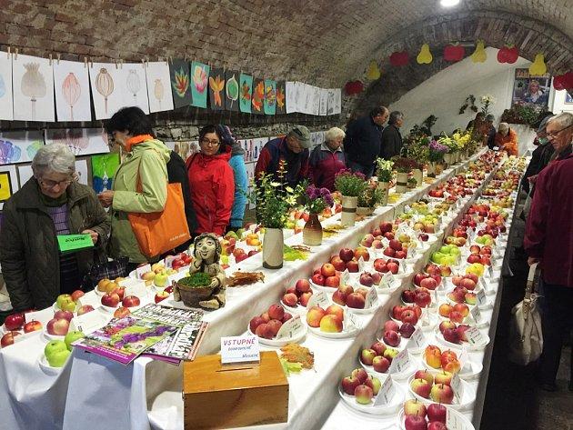 Kromě jiného také proběhlo divácké hlasování o nejhezčí jablko. Lidé mohli vybírat z dvanácti jablek. Celkově bylo na výstavě k vidění více než 320 různých jablečných odrůd.