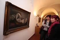Výstava Koupání bude otevřena do konce března.