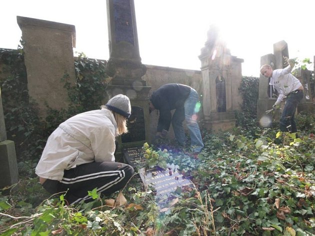 Židovský hřbitov v Chotěboři prokoukl.