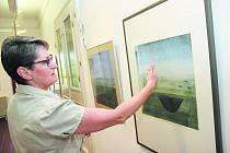 Ředitelka havlíčkobrodské galerie Hana Nováková (na snímku) ukazuje mistrovskou výtvarnou práci se suchým pastelem akademického malíře Pavla Sukdoláka