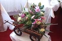 Z výstavy květin Spolku zahrádkářů Krucemburk