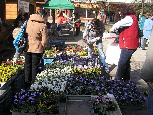 Prodejci květin na Smetanově náměstí.