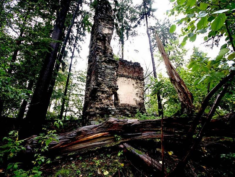 Zbytky hradu Ronov stojí ve vsi Ronov nad Sázavou, avšak netyčí se nad touto řekou, nýbrž nad jejím pravobřežním přítokem - Losenickým potokem. Hrad počátkem 14. století založili Lichtenburkové.