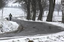 Od konce minulého týdne sype sníh jako v Nohavicově baladě Ladovská zima. Martin si rovných deset dnů počkal až na Alberta a Cecílii, aby pospolu přikryli krajinu.