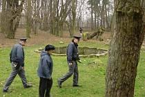 Bojuje za záchranu parku. Eva Matějková na zámku v Úhrově bydlí a podle ní je ohrožena národní kulturní památka, protože stromy v parku se mají vykácet bez jakékoli koncepce do budoucna.