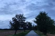 Cesta z Hesova do Keřkova ožije skoro stovkou nových stromů.