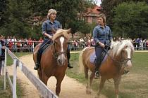 Návštěvníci areálu brodské psychiatrie budou moci vidět i koně, kteří pomáhají lidem s léčbou.