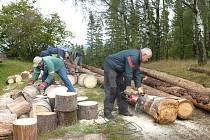 Lyžařský areál Vysoká na podzim ožil čilým ruchem. Kácí se stromy, upravuje terén a připravuje se vše potřebné před zahájením zimní sezony.