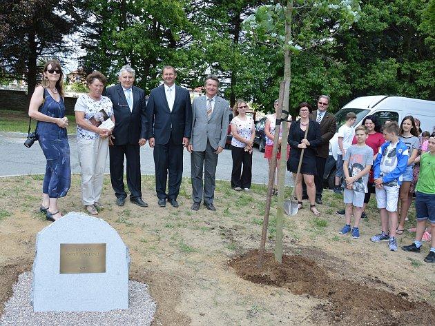 Ve Světlé nad Sázavou zasadili strom na památku Olgy Havlové.