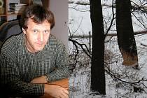 U Šlapanky. Bobr evropský si tam  hravě poradil  i se vzrostlými stromy. Podle Václava Hlaváče (vlevo) je třeba počítat s tím, že na Vysočině dojde k   dalšímu šíření tohoto zajímavého zvířete.