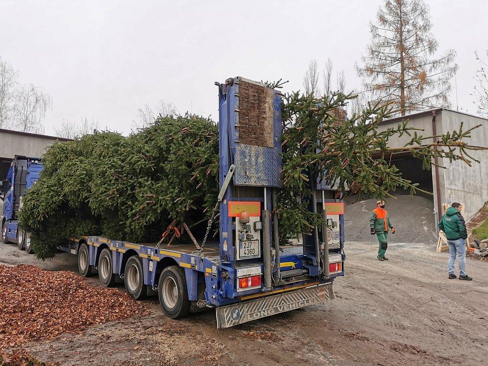 Vánoční strom z Havlíčkova Brodu zamířil do Holandska. Foto: Archiv výboru HB - Brielle