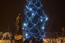 Vánoční strom v Polné