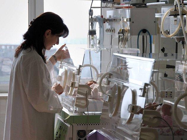 Nedonošeným dětem v inkubátoru pomáhá častý a intenzivní kontakt s matkou.