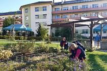 Společné dny na zahradě
