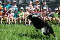 Canisterapie v Mateřské škole ve Věži na Havlíčkobrodsku.
