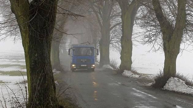 Pokud by proti tomuto nákladnímu autu u Žižkova Pole jelo ještě nějaké další, jedno z nich by nutně muselo skončit mimo vozovku. Alej je podle řidičů a silničářů ale více než problémová nejen kvůli nedostatečné šířce, ale také pro nebezpečné kořeny.