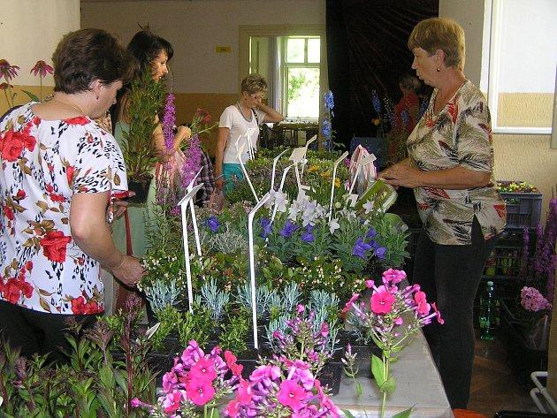 Součástí  pouti  u sv. Anny v Pohledu je tradiční výstava květin v místním zámku, kterou pořádá místní spolek zahrádkářů.