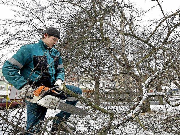 Lidé, kteří se teď vypraví na Havlíčkovo náměstí v Havlíčkově Brodě, budou určitě překvapeni. V okolí morového sloupu už nenajdou stromy, které tam po dlouhá desetiletí dotvářely typický ráz centrální části okresního města.