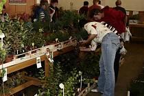 Světelská zahrádka návštěvníkům nabídla ovoce, zeleninu, ale také možnost koupit si pokojové i venkovní rostliny.