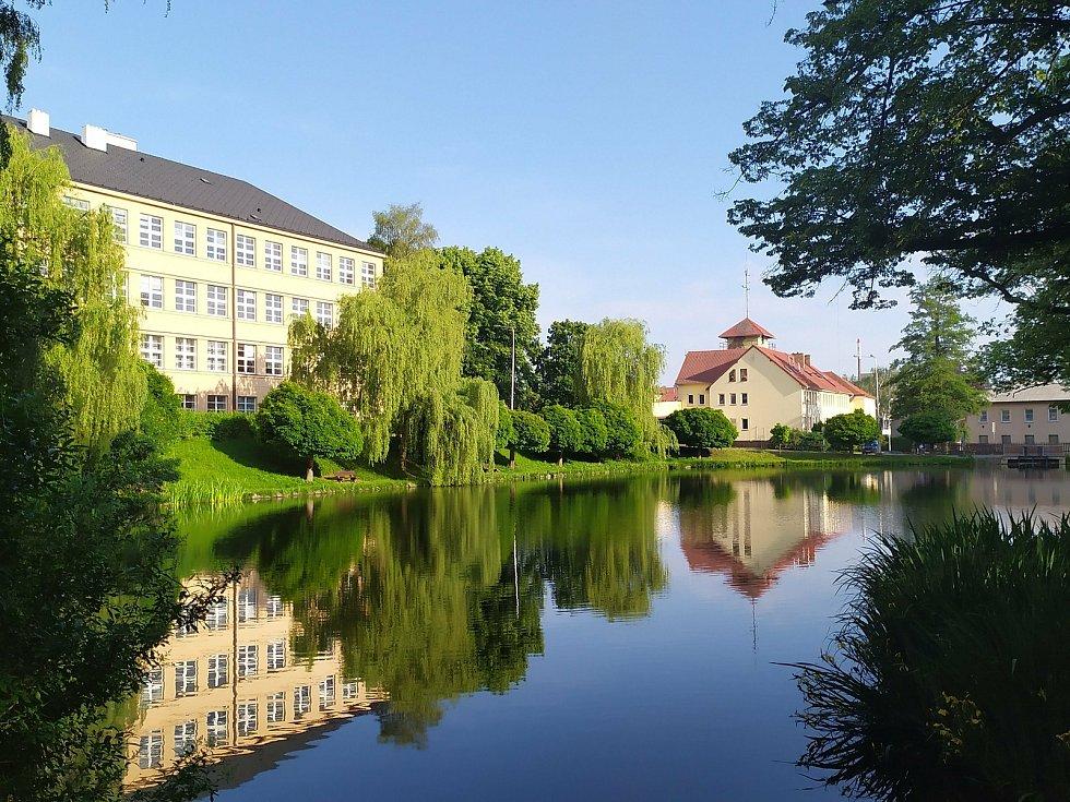 Zeleň na každém kroku. Podívejte se na snímky města Havlíčkův Brod a jeho okolí