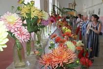 V Pohledu vystavovalo své květiny osmnáct pěstitelů z Vysočiny. K vidění byly i tyto nádherné jiřiny.