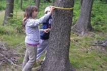 Do revíru Hlinsko, který patří Lesům České republiky, se vydalo více než padesát školáků ze Ždírce nad Doubravou, aby si vyzkoušeli v praxi veškeré dovednosti, které by měl znát správný lesník.