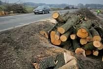 Stromy šly k zemi. Po stromořadí, které po dlouhá léta lemovalo silnici první třídy mezi Ždírcem nad Doubravou a Krucemburkem, už není ani památky.