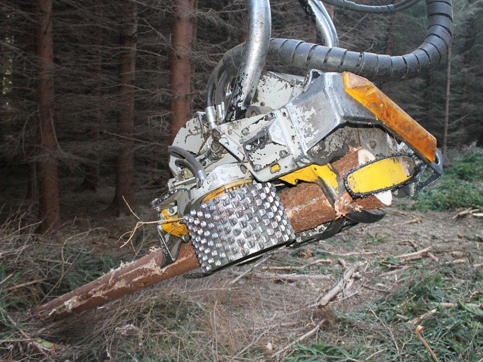 Multifunkční hlavice harvestoru. Těžkou práci, kterou při těžbě odvádí lesní dělníci, zvládne hlavice harvestoru mnohokrát rychleji. Strom pokácí, odvětví a nařeže na požadovanou délku.
