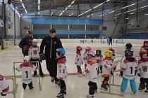 V sobotu 28. ledna se akce Pojď hrát hokej uskutečnila na ledě Sportovního centra Pěšinky ve Světlé nad Sázavou.