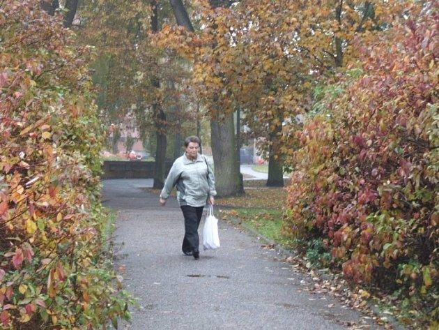 Nebezpečí. Procházka humpoleckým parkem Stromovka se může změnit v pořádný šok.