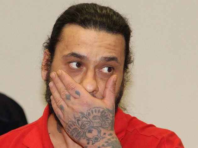 Nenapravitelný. Vojtěch Farkaš by měl příštích dvanáct let svého života strávit za mřížemi nejpřísnějšího vězení. Rozsudek ještě musí potvrdit odvolací soud.
