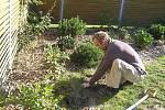 Terapeutická zahrada FOKUSu zve k odpočinku