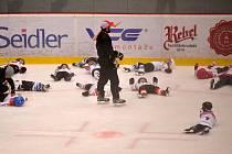 V Kotlině se chystá škola pro malé hokejisty. Ilustrační foto.