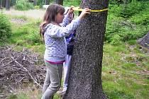 Přímo v přírodě se školáci učí lesnickým dovednostem. Třeba jak změřit strom.