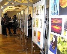 Výstava nabízí to nejlepší z tvorby členů Klusu.