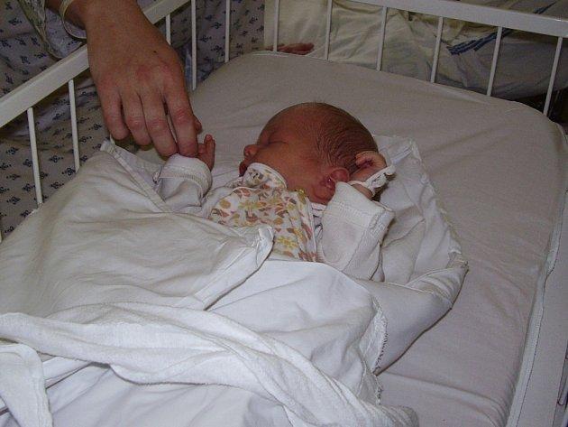 """Jediné štědrovečerní miminko. To  je malý Adam Dvořák z Vilémova u Golčova Jeníkova. Podle maminky Kláry je nejhodnějším """"jezulátkem""""  na celém oddělení."""