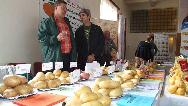 Účastníci konferece viděli celou řadu odrůd brambor