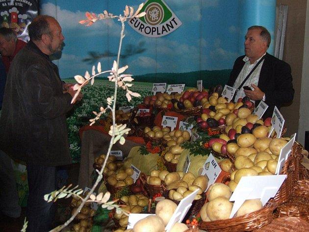 Účastníci konference viděli celou řadu odrůd brambor