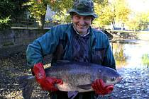 Známou pohádku o třech přáních pro zlatou rybku si po výlovu obecního rybníka v Modlíkově přeříkal Josef Sobotka. Do vody potom vrátil jediného tolstolobika.