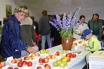 Součástí výstavy v Přibyslavi je soutěž o nejhezčí jablko.