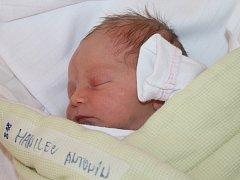 Antonín Hanilec, Kutná Hora, 15. 8. 2013, 2 950 g