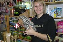 Chcete vidět, jak padne vašemu pejskovi nový zimní obleček a botičky? Například  prodejna chovatelských potřeb U Erušky má dokonce vlastní švadlenu a psího figuranta.