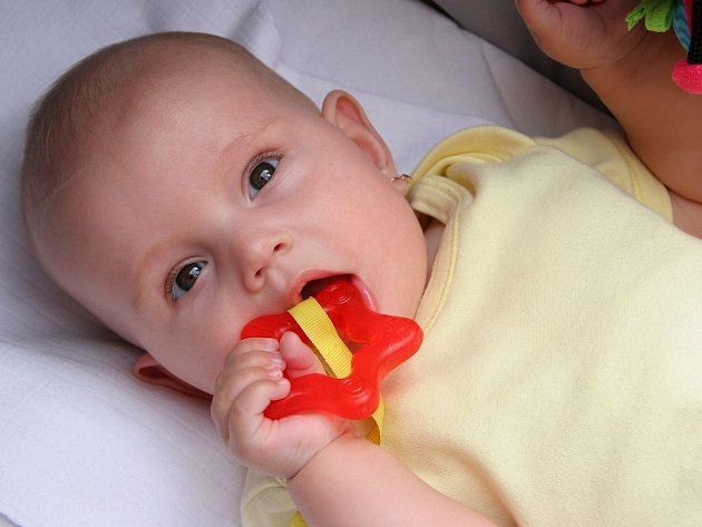 Pozor na nebezpečné materiály. Některé plastové hračky a doplňky mohou obsahovat zdraví nebezpečné látky. K tomu, aby se dostaly do těla miminka, stačí olíznutí.