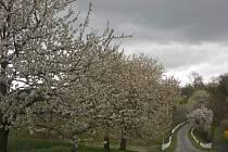 Krajina kolem Nezdína byla a je kouzelná v každé roční době, ale pro irského žoldáka Deverouxe viditelně žádné kouzlo neměla.