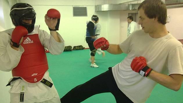 Okinawa Karate a Kobudo HB
