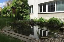 Přírodní zahradu vybudovali studenti gymnázia v rámci mezinárodního projektu Ekoškola.