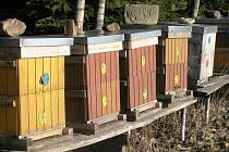 O svoje včely se bojí hlavně včelaři, kteří mají úly ve volné přírodě.